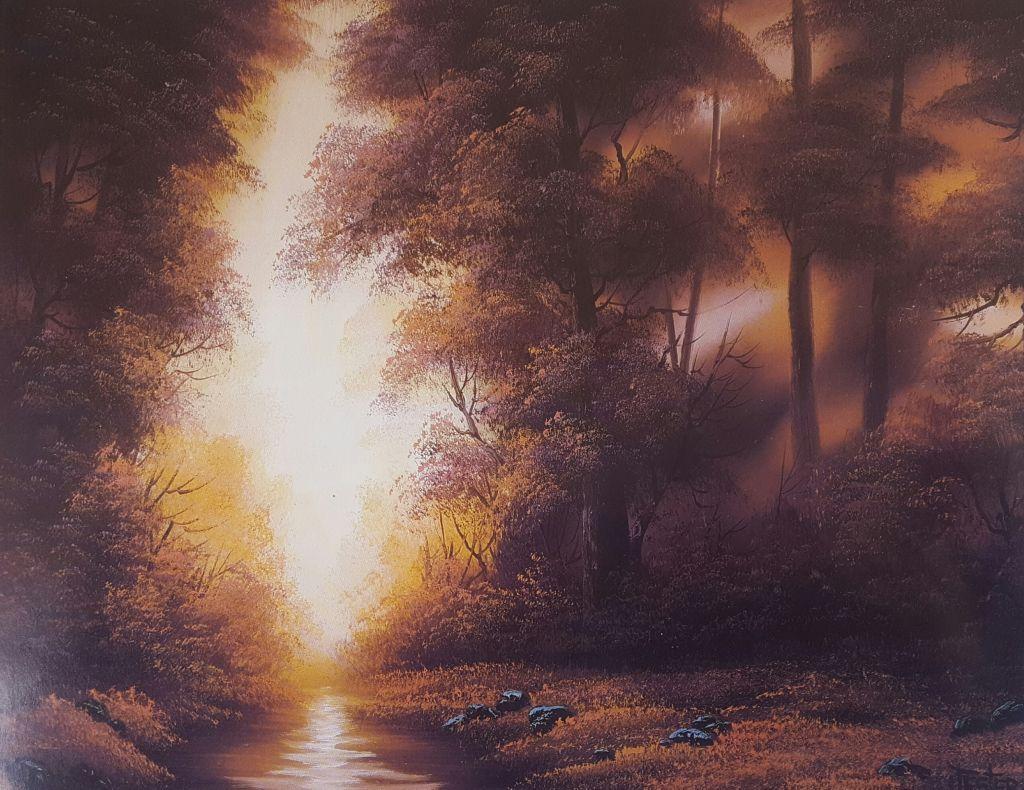 """Workshop """"Ao encontro da luz"""""""