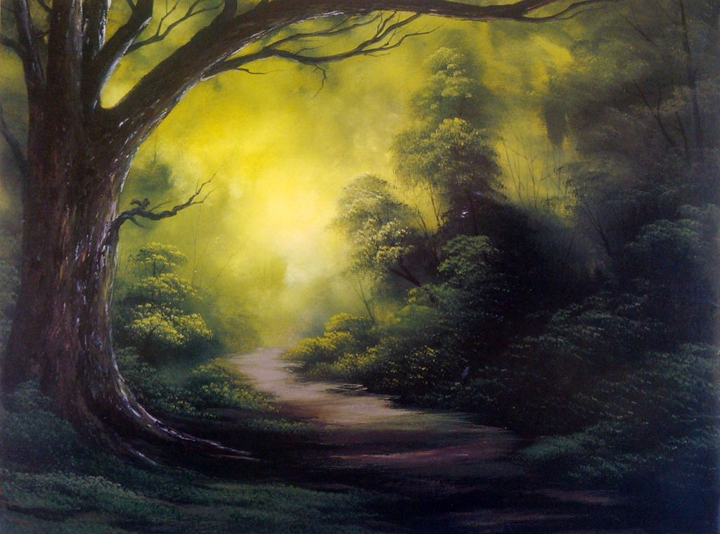"""Workshop """"Limite da floresta"""""""